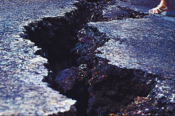 The Domain Monetization Seismic Shift