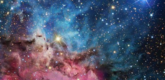 triffid nebula 1350x652 Wolftalker Domain Names.jpg